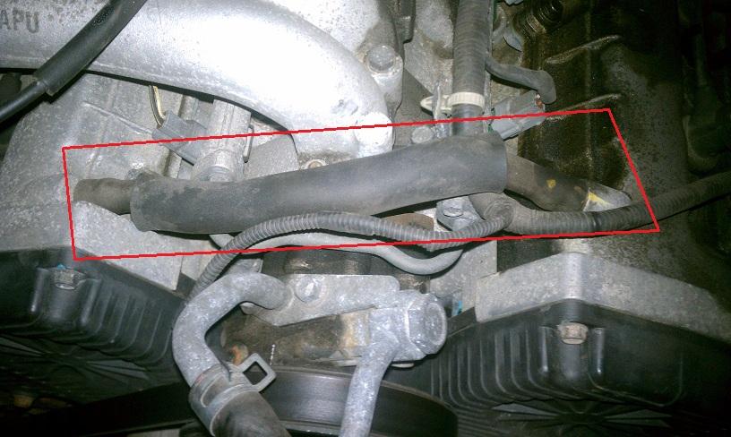 Need help identifying this hose | Hyundai Forums