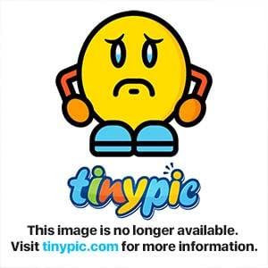 Hi From South Africa | Hyundai Forums
