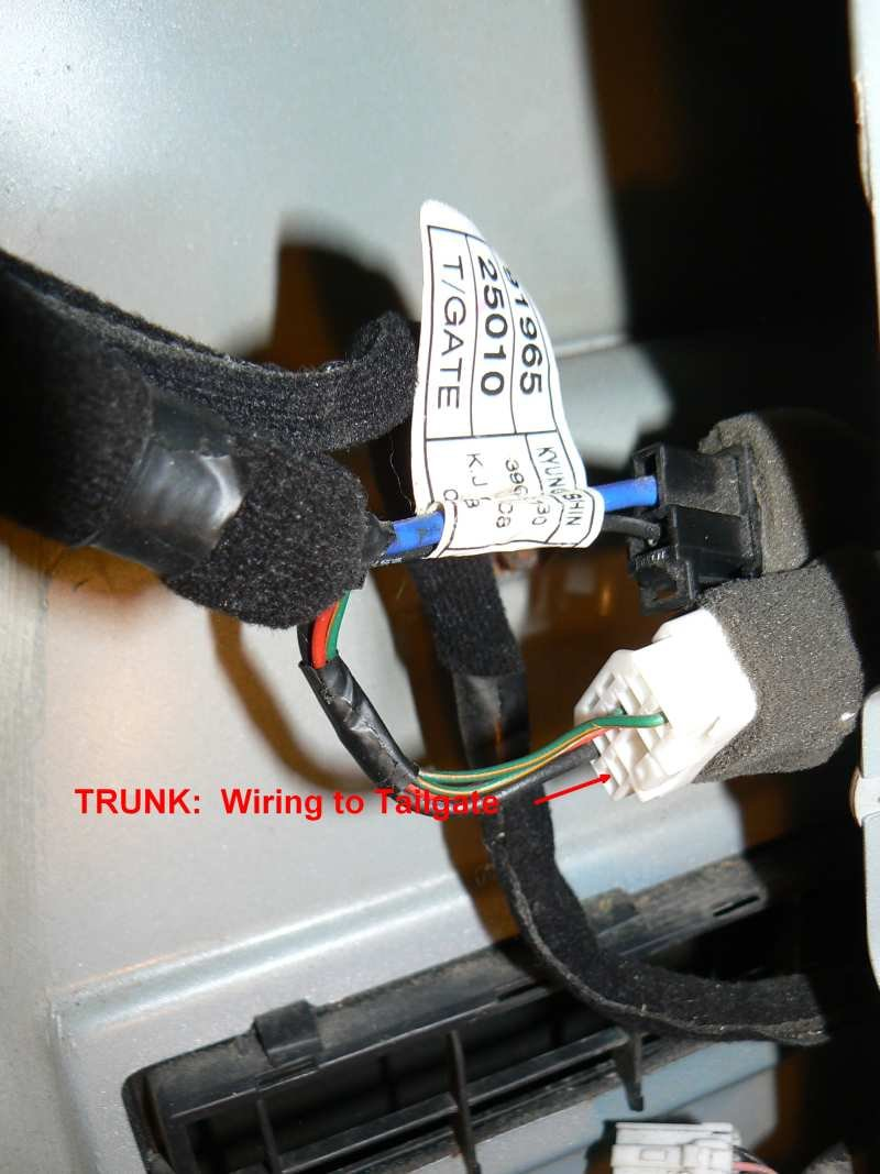 Trunk Harness Issue